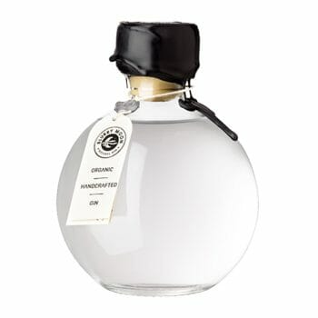 gin-blurry-moon