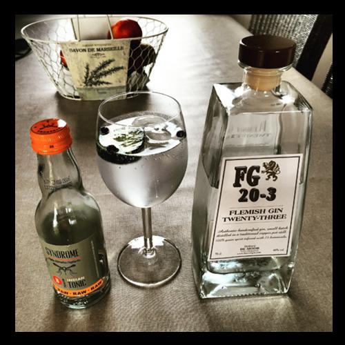 de Coninck Wine Merchant Gin Flemish 20-3